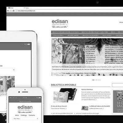 diseno-grafico-web-edisan