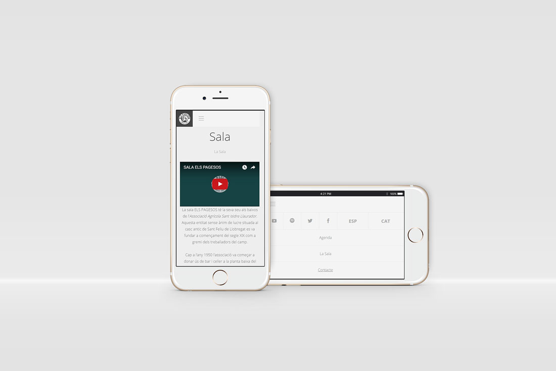 web-responsive-diseno-grafico-identidad-iphone-elspagesos